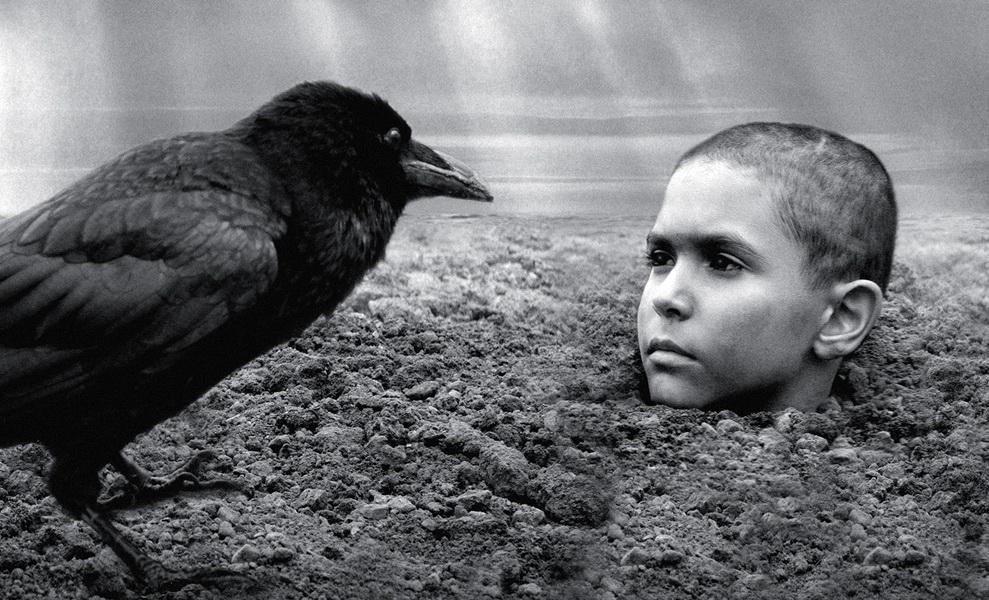 Jerzy Kosiński: Pomaľované vtáča