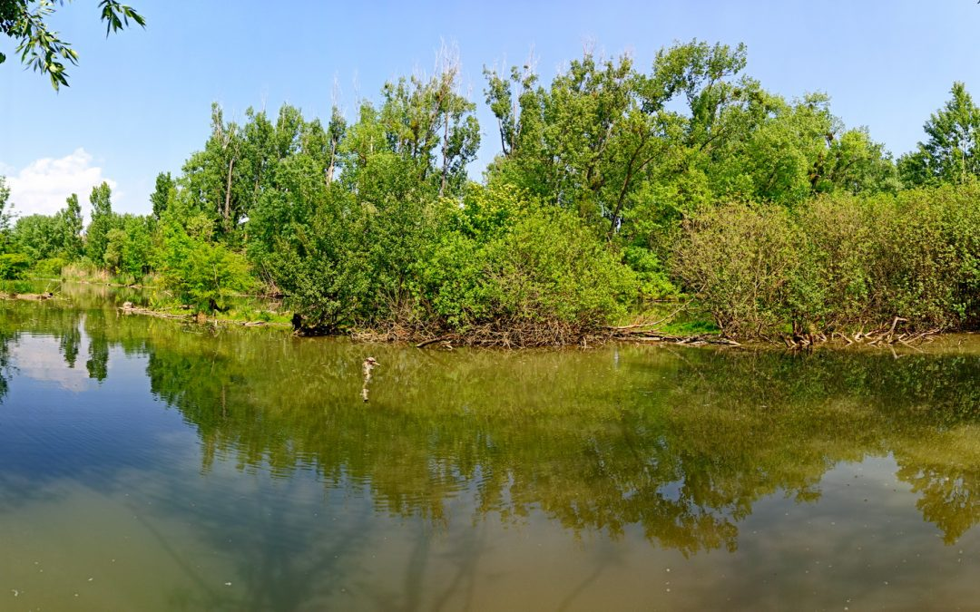 Na Malom Dunaji